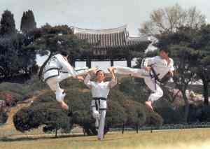 taekwondo-itf-1 (choi)
